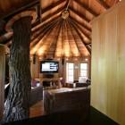 Luxury Tree Houses Interior Design Inspiration