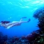 snorkeling palawan dream destination for summer