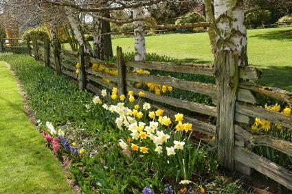 long trail rustic backyard fence ideas