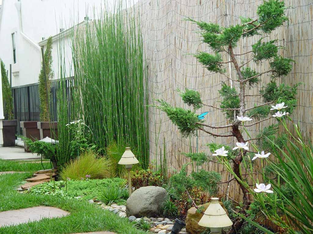 English Garden Design With Unique Plants Decorating 2017