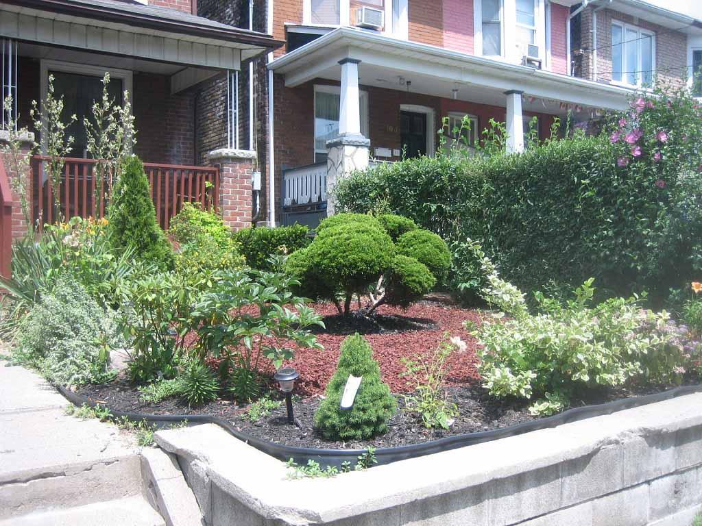 front yard landscaping plants several great trees ideas homescorner com. Black Bedroom Furniture Sets. Home Design Ideas